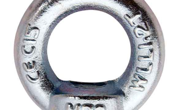 DIN582 Eye Nuts|Stainless Steel AISI 316 Lifting Eye Nuts