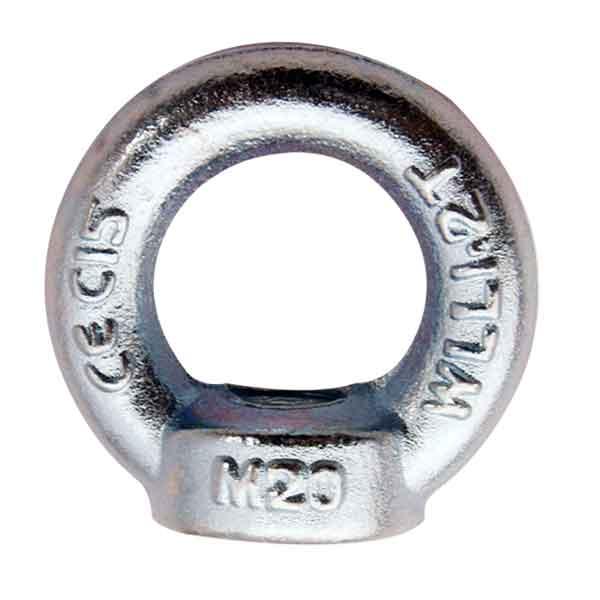 DIN582 eye nuts